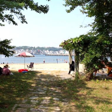 緑地部分から見た三浦半島城ヶ島ビーチ