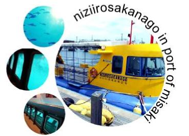 海中散歩・水中観光船にじいろさかな号